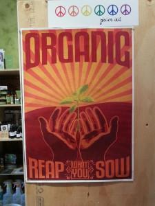 Organic Circle #17