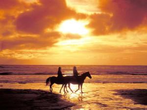 HorseBeach_01